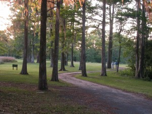 brookgreen-couple-walking-trail